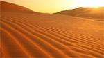 desert loop